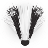 Lancashire Badgers | Social Profile