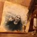 Nur Toktay's Twitter Profile Picture