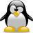 Henguin profile