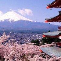katsuhiro放射能健診署名運動京都   Social Profile
