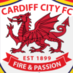 CardiffRedBlues - Bluebirds Top 6?! - Where will the mighty #bluebirds finish in the league? We tweet real-time league predictions, match stats. #ccfc #cardiffcity Enjoy!