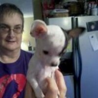 Pam Murphy,M.S.,RRT | Social Profile
