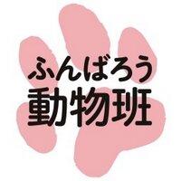 ふんばろう動物班 | Social Profile