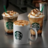 The profile image of Starbuck_No1