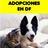 AdopcionesEnDF profile