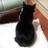 The profile image of sakurakita57