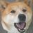 The profile image of y_korechika