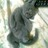 The profile image of aap_mayumi