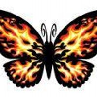 Flamming Butterflies