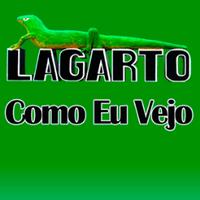 @LagartoComoVejo