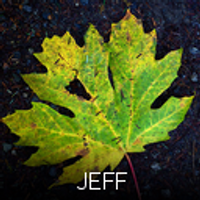 Jeff | Social Profile