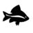 @skunkfish_info