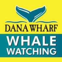 Dana Wharf | Social Profile