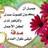 @AsemSakr2000