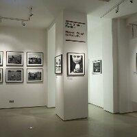 FOTO8 Gallery | Social Profile