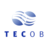 tecob.com Icon