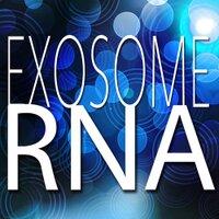 ExosomeRNA