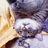 The profile image of sho_tabi