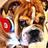 @Dog_Roscoe