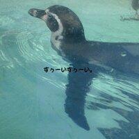 @yasubei45