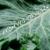 From Veg to Vegan Ⓥ | Social Profile