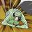 The profile image of taki_oreha_bot