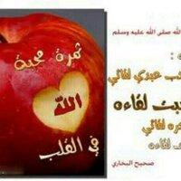@SailatHanu780