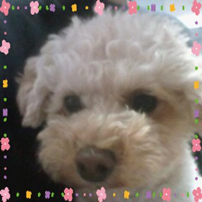祥江   Social Profile