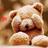 nohara_m