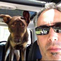 Mike Mitchelson | Social Profile