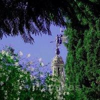 Sevilla en Estampas | Social Profile