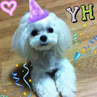멧돼징♥   Social Profile