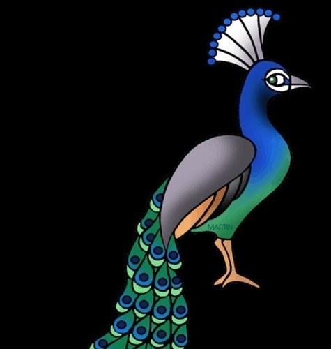 Parrot essay in marathi