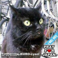 黒猫ぽち【休止中】 | Social Profile
