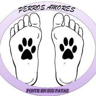 PerrosAmores