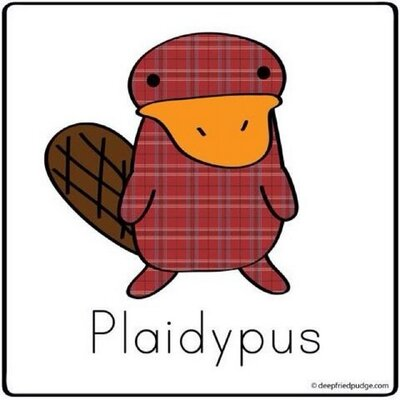 PlaidMcPlatypus | Social Profile