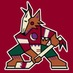 Phoenix_Jet - Phoenix Jet - VT, Coyotes, NY Isles, NY Jets, Question the status quo.