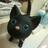 The profile image of mamemoyashi380