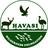 @Havasi_WF