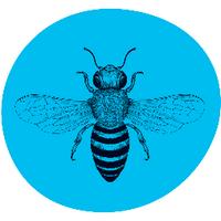 Buzzcar | Social Profile