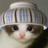 おもしろ動物画像 funny__animals のプロフィール画像