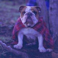 Reg Mac | Social Profile