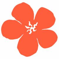 Social Wahines | Social Profile