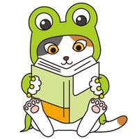 norico arai | Social Profile