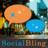 SocialBling