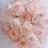rosethorn31820