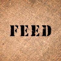 FEED Projects | Social Profile
