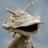 The profile image of afirieitosyosin