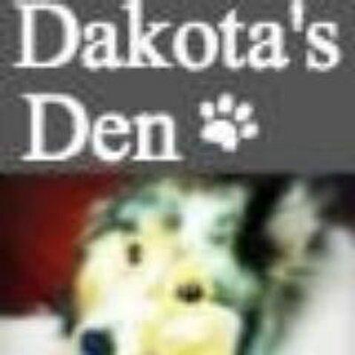 DakotaSheltie | Social Profile