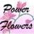 toronto_florist